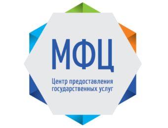 Вступление (Структуры для получения государственных услуг — МФЦ и портал Госуслуги, их взаимодействие)